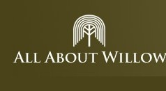 All About Willow